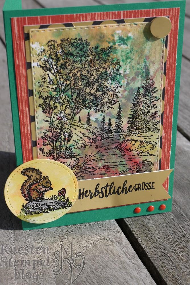 Ink Smooshing Technique, Landleben, Technik Blog Hop, Ruhe und Kraft, Embossing, Poesie der Natur, Anleitung, Stampin' Up, Kuestenstempel.blog