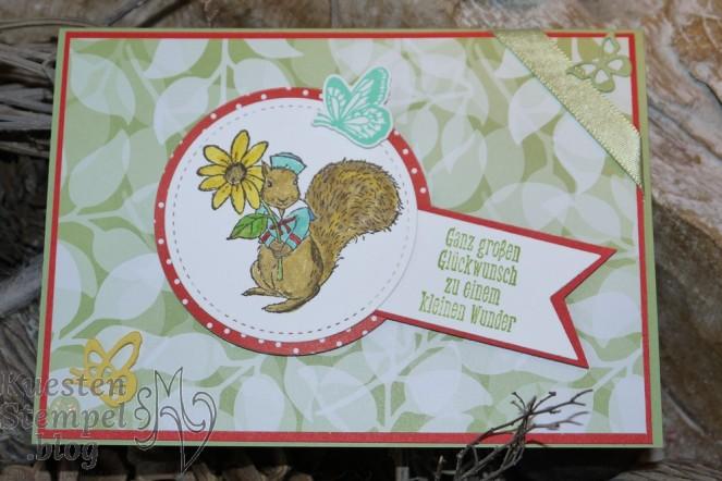 Fable Friends, Voller Schönheit, Schöne Schmetterlinge, Designerpapier Blütensinfonie, Stampin`Write Marker, Stickmuster, Tierische Glückwünsche, Babykarte, Stampin' Up, Kuestenstempel.blog