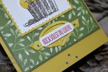 Froschkönig, Süsse Grüsse für dich, Stampin' Blends, Lagenweise Quadrate, Blütensinfonie, Große Zahlen, Thinlits Formen Werkzeugteile, Geburtstagsmix,Stampin' Up, Kuestenstempel.blog